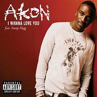 Přední strana obalu CD I Wanna Love You [Live From Canal Room]