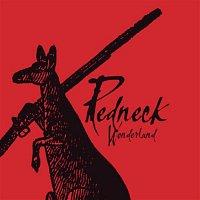 Midnight Oil – Redneck Wonderland