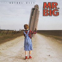 Mr. Big – Actual Size