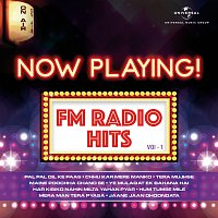 Různí interpreti – Now Playing! FM Radio Hits, Vol. 1