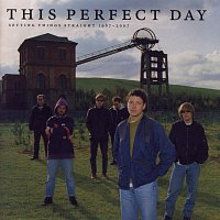 This Perfect Day – Setting Things Straight 1987 - 2007