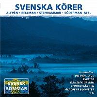Různí interpreti – Svenska korer