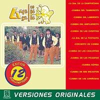 Los Ángeles Azules – 12 Éxitos Instrumentales