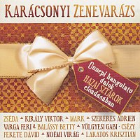 Různí interpreti – Karacsonyi zenevarazs
