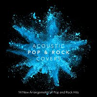 Různí interpreti – Acoustic Pop and Rock Covers: 14 New Arrangements of Pop and Rock Hits