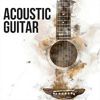 Chris Mercer, Zack Rupert, James Shanon, Thomas Tiersen, Ed Clarke, Django Wallace – Acoustic Guitar
