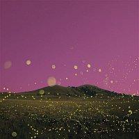 Tinie Tempah, Nea – Chasing Flies (feat. Nea)