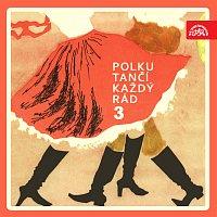 Různí interpreti – Polku tančí každý rád 3