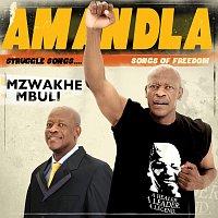 Mzwakhe Mbuli – Amandla