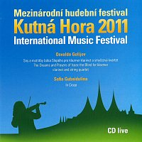 Různí interpreti – Mezinárodní hudební festival Kutná Hora 2011 (Golijov: Sny a motlitby Izáka Slepého, Gubaidulina: In Croce)
