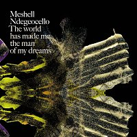 Meshell Ndegeocello – The World Has Made Me The Man Of My Dreams