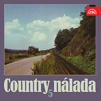 Různí interpreti – Country nálada 5