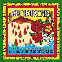 Big Mountain – The Best Of Big Mountain