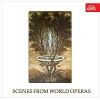 Různí interpreti – Scény ze světových oper