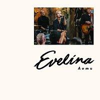 Evelina – Aamu [Vain Elamaa Kausi 9]