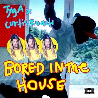 Tyga & Curtis Roach – Bored In The House