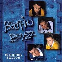Barrio Boyz – 12 Super Exitos