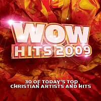 Above The Golden State – WOW Hits 2009