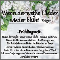 Různí interpreti – Wenn der weisze Flieder wieder bluht Folge 1 - Fruhlingszeit