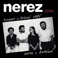 Nerez – Koncert v Orlové 1985/Nerez v Betlémě