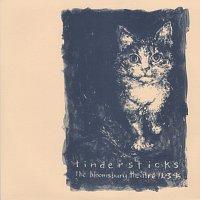 Tindersticks – The Bloomsbury Theatre 12.3.95