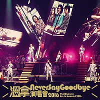 The Wynners – Wen Na Never Say Goodbye Yan Chang Hui 2016 [Live]