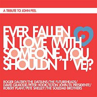 Roger Daltrey, The Datsuns, The Futureheads, David Gilmour, Peter Hook, Elton John, El Presidente, Robert Plant, Pete Shelley, The Soledad Brothers, The Buzzcocks – Ever Fallen in Love (With Someone You Shouldn't've)?