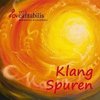 Vox Cantabilis Bischofshofen – KlangSpuren