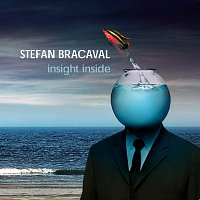 Stefan Bracaval – Insight Inside