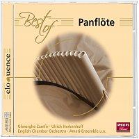 Různí interpreti – Best of Panflote
