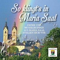 Chore, Musikgruppen aus Maria Saal – So klingt's in Maria Saal