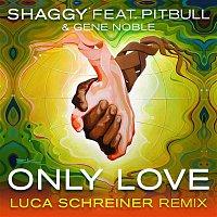 Shaggy, Pitbull, Gene Noble – Only Love (Luca Schreiner Island House Mix)