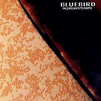 Bluebird – Falling Back to Earth