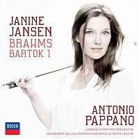 Brahms Violin Concerto in D, Op.77 - Adagio