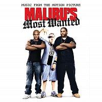 Různí interpreti – Malibu's Most Wanted