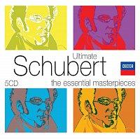 Různí interpreti – Ultimate Schubert