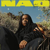 NAO – Another Lifetime