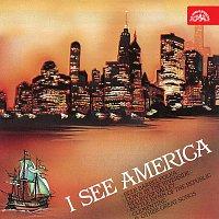 Noví Zelenáči Mirka Hoffmanna – I See America