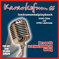 Karaokefun.cc VA – Herz aus Eis - Instrumental - Karaoke