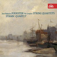 Přední strana obalu CD Foerster: Smyčcové kvartety (komplet)