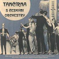 Různí interpreti – Tančírna s českými orchestry