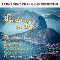 Fernandez Pray & sein Orchester – Fiesta in Rio