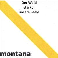 Various  Artists – Der Wald starkt unsere Seele