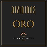 Divididos – Serie Oro