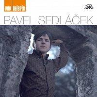 Pavel Sedláček – Pop galerie MP3