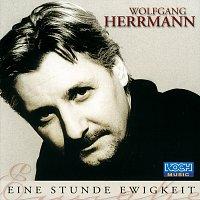 Wolfgang Herrmann – Eine Stunde Ewigkeit