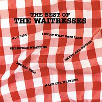 The Waitresses – The Best Of The Waitresses