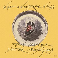 Thomas Heberer, Dieter Manderscheid – What A Wonderful World