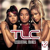 "TLC – 12"" Masters - The Essential Mixes"