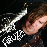 Michal Hrůza – Intuice 2012